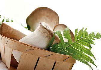 Gljive na francuskom: 2 najukusniji recept