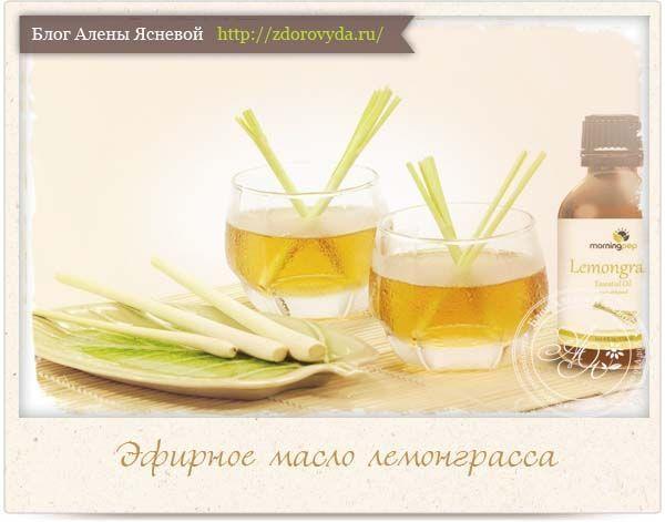 Eterično olje limonine trave - najboljši način za uporabo v medicini in kozmetike