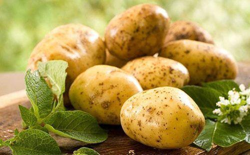 Krtola krompira na stolu