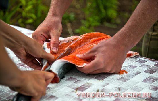 В сырой рыбе много паразитов
