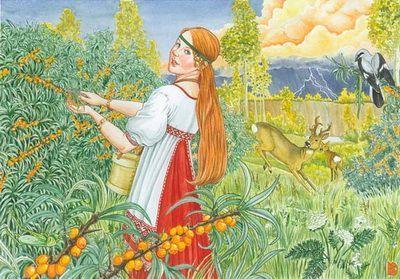 Облепиха - оранжевое полезное чудо!