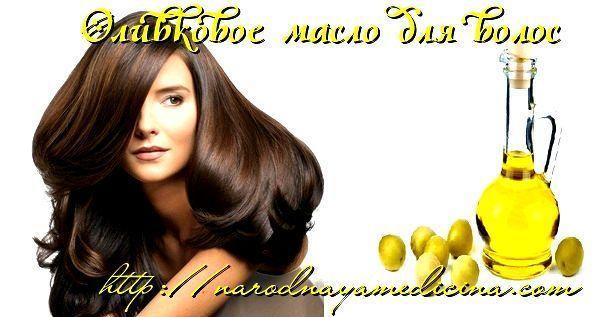 оливковое масло для сухих волос