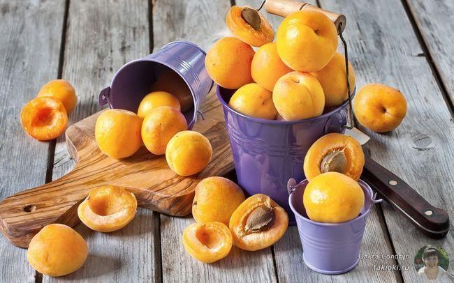 Полезные свойства абрикосового масла и примеры применения его в косметологи