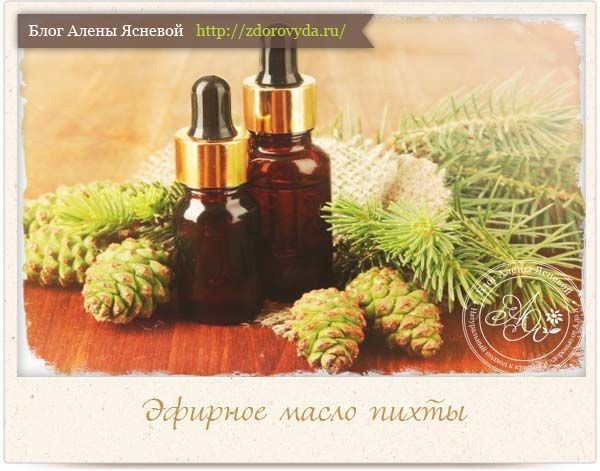 Польза пихтового масла- эфирная сила хвои на страже нашего здоровья