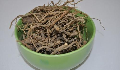 Artemisia korijen protiv drozd