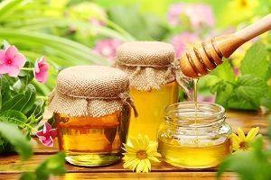 Liječenju drozd med