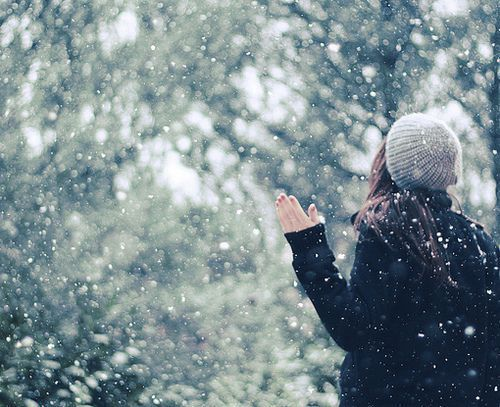 Волшебное фото в зимнем лесу